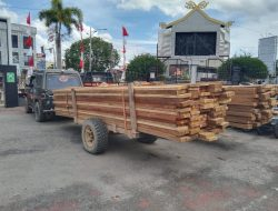 Horee Polres Dumai Tangkap Barang Bukti Ilegal Logging