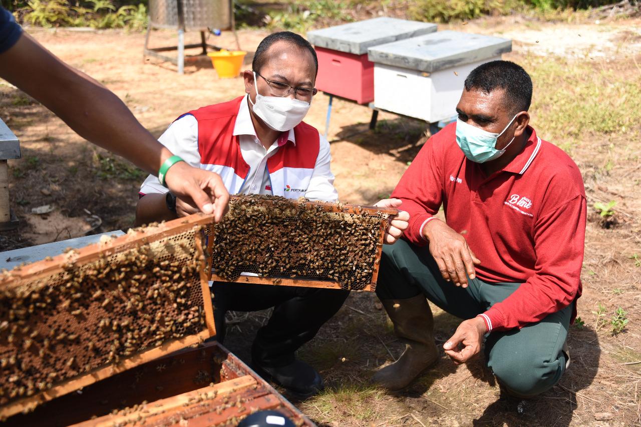Lebah Madu Ramah Lingkungan